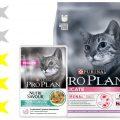 Корм для кошек Pro Plan: отзывы, разбор состава, цена