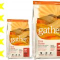 Корм для кошек Gather: отзывы, разбор состава, цена