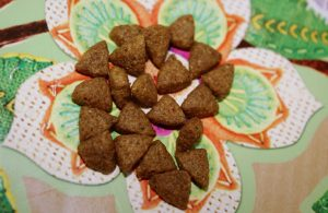 Отзыв о корме для кошек Purina One