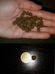 Отзывы о сухом корме для кошек Эукануба