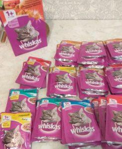 Отзыв о сухом корме Вискас для котов