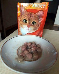 Отзывы о влажном корме для кошек Proхвост