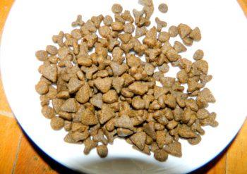 Гранулы корма для кошек Нутрам