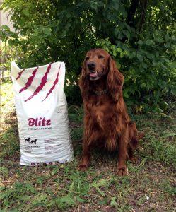 Отзыв о корме Blitz для собак