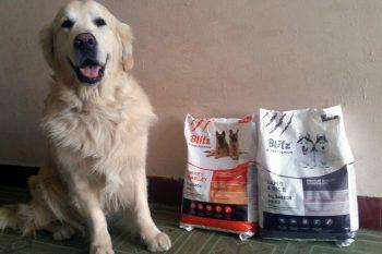 Отзыв о корме для взрослых собак Блиц