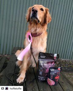 Отзывы о корме PrimaDog для собак