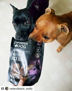 Отзывы о корме для собак PrimaDog