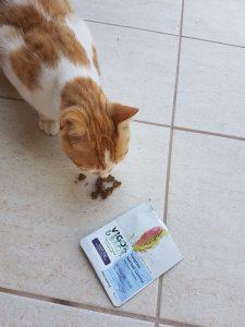 Отзывы о сухом корме Vigor & Sage для кошек