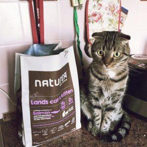 Отзывы о сухом корме для кошек Naturea