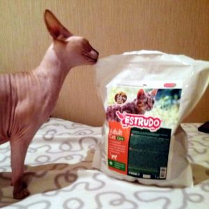 Отзывы о корме для кошек Estrudo