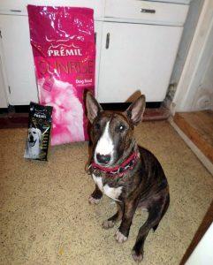 Отзывы о корме для собак Premil