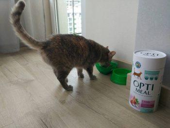 Отзыв о корме для кошек Оптимил