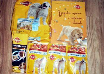 Отзыв о корме для собак Педигри