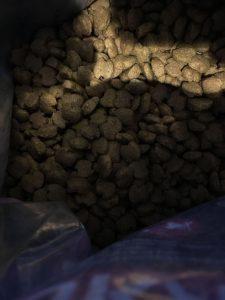 Гранулы корма для собак Эукануба