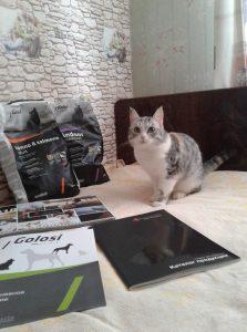 Отзывы о корме для кошек Golosi