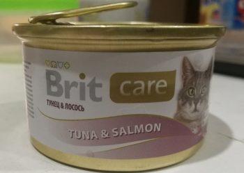Лучший влажный корм для кошек - Brit Care
