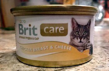 Влажный корм Brit Care для котов