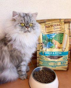 Корм Natural Greatness для кошек