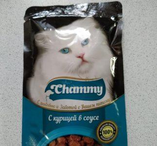Отзыв о корме для кошек Chammy