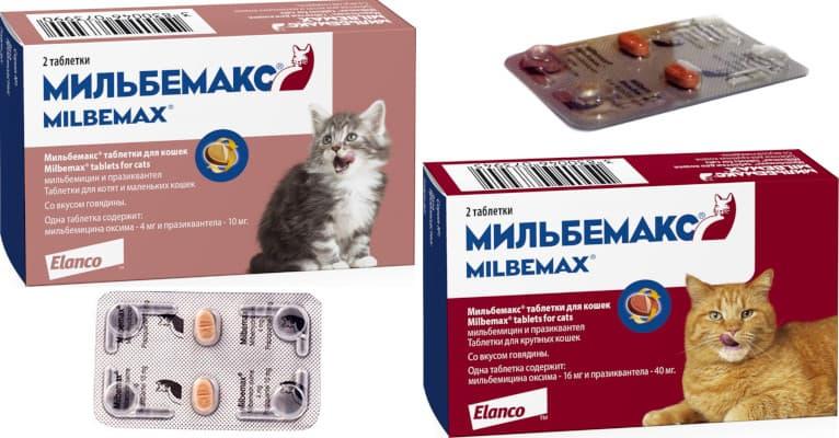 Мильбемакс для кошек - отзывы